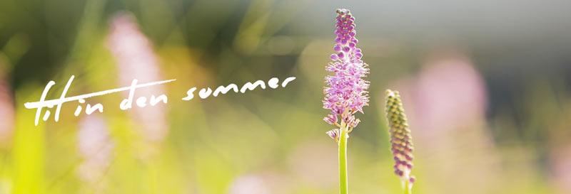 Fit in den Sommer, Ernährungsberatung, Paleo, Personal Training, Outdoor Fitnesstraining